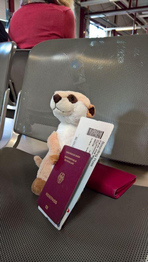 Voll ausgestattet und bereit für die Reise nach Rom